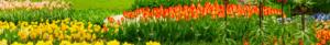 Linea-Garden